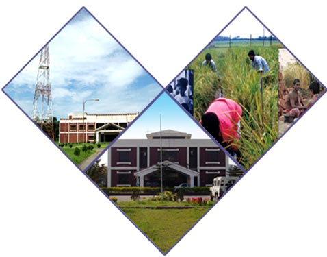 Bangladesh Open University SSC Routine 2014