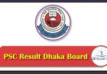 PSC Result 2019 Dhaka Board
