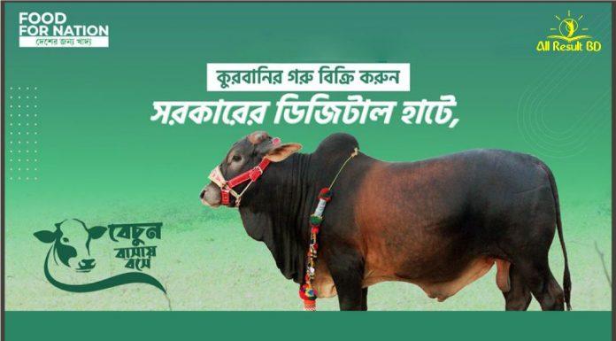 Online Cow Hat