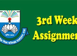 3rd Week Assignment