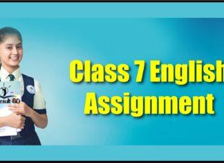 Class 7 Assignment English