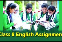 Class 8 English Assignment