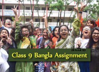 Class 9 Bangla Assignment