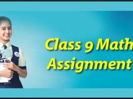 Class 9math assignment Answer