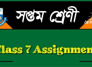 class 7 assignment