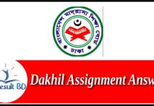 Dakhil Assignment Answer