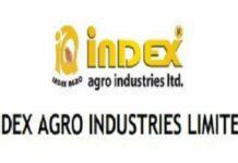 Index Agro IPO