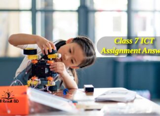 Class 7 ICT Assignment Answer