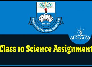 Class 10 Science Assignment