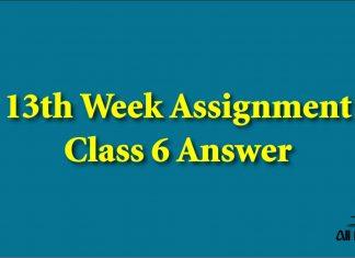13th Week Assignment Class 6