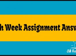 19th Week Assignment